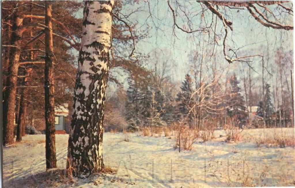 С Новым Годом! Happy New Year! Новогодние открытки СССР. New year postcards of the USSR